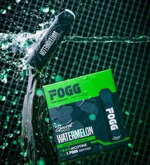 FOGG Vape Watermelon Disposable